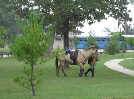 092309_1B_Memorial_horse